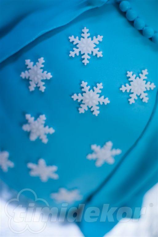 Frozen Elsa dort 40
